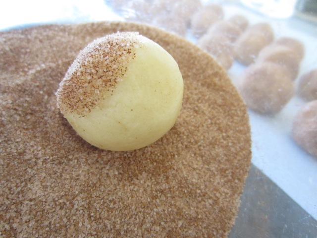 Shape the dough into Timbit sized balls, then roll in sweet, sweet cinnamon sugar